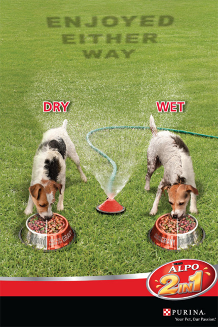 PURINA Advert